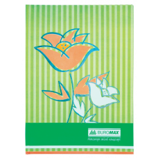 "Книга обліку ""Квіти"" 80 арк., А4,салатовый ВМ.2300-615"