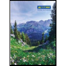 Книга обліку 96 арк/кліт.газ.(тв. лам. обл), А4 BM.2430