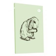 "Блокнот TM Profiplan ""Animal note"", rabbit, В6. 50674/1"