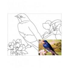 Полотно на картоні з контуром Птахи №5 25*35 бавовна GPA283405 Етюд